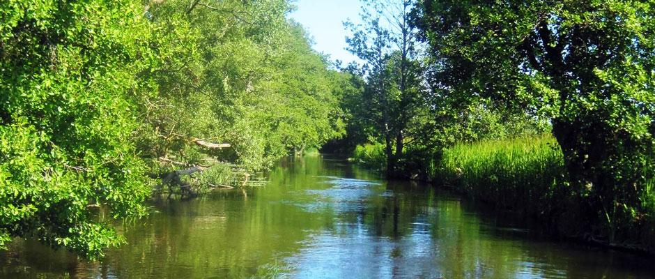 river_cropt2